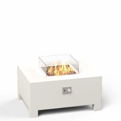 Brann 2