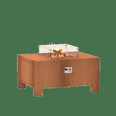Brann 7